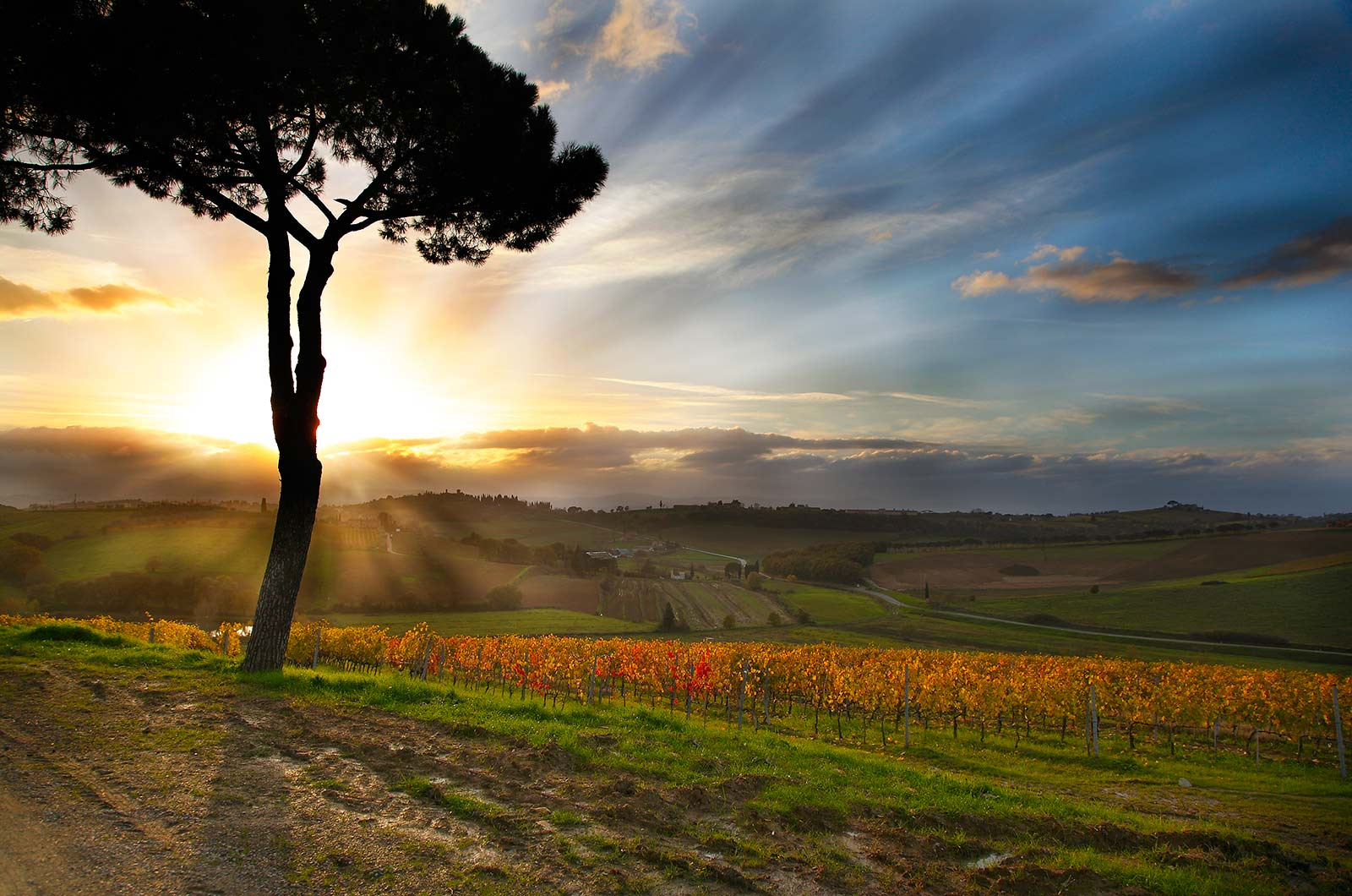 When to visit Montepulciano? A guide for every season