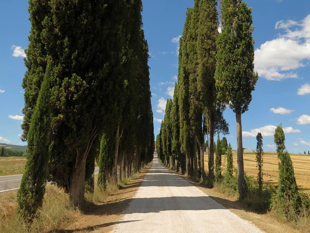 Sinalunga e Rigomagno, tesori da scoprire vicino Montepulciano