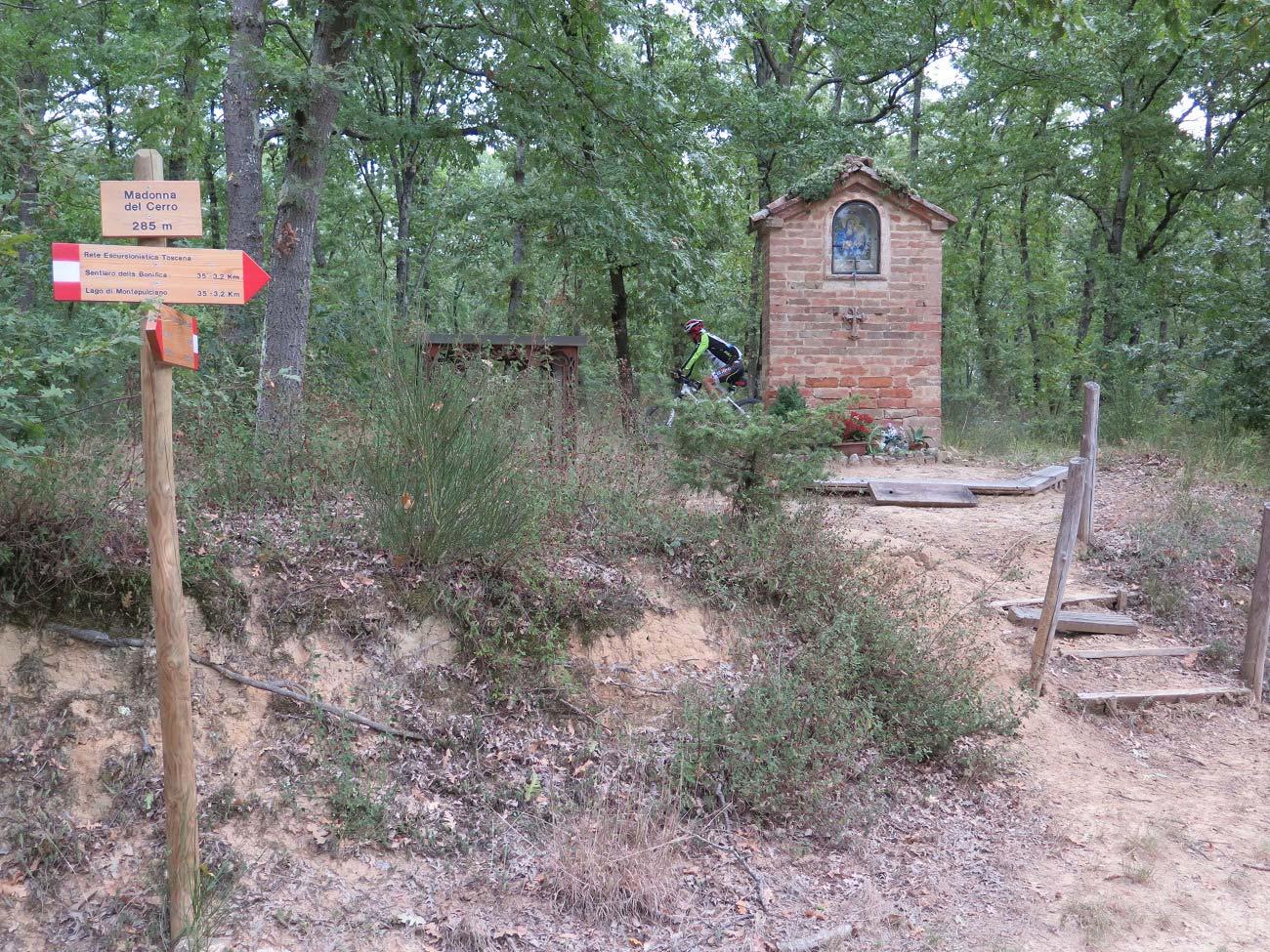 Montepulciano e dintorni: alla scoperta del Bosco delle Cerraie