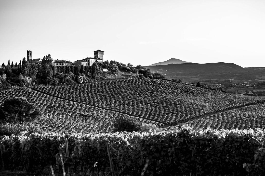Panorama castello di Valiano